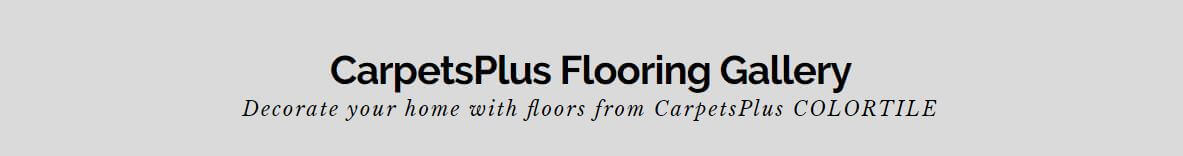 CarpetsPlus Flooring Gallery - Decorate your home with floors from CarpetPlus COLORTILE